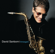Timeagain - David Sanborn - David Sanborn