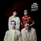 The Spook School - Less Than Perfect