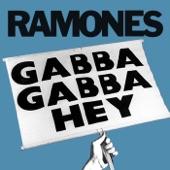 Gabba Gabba Hey - Single