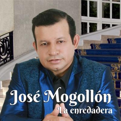 La Enredadera - Single - Jose Mogollon