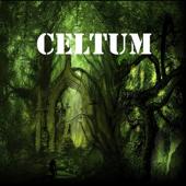 Celtum (Aires Celtas)