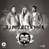 DJ Project & Mira - Inimă Nebună artwork