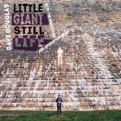 Little Giant Still Life (feat. The Westerlies & Anwar Marshall) - Dave Douglas album