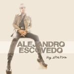 Alejandro Escovedo - Party People