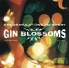 Congratulations... I'm Sorry - Gin Blossoms