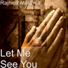 RajheshVaidhya - Let Me See You artwork
