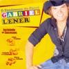 Gabriel Lener