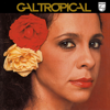 Gal Costa - India artwork