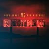 Nick Jonas & Robin Schulz - Right Now Grafik
