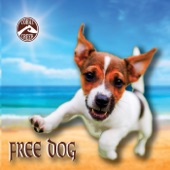 Coral Creek - Free Dog