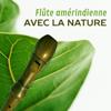 Serenity Nature Sounds Academy - Flûte amérindienne avec la nature: Des sons relaxants pour le yoga, le spa, le massage et le sommeil kunstwerk