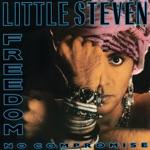 Little Steven - Trail of Broken Treaties
