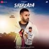 Shehzada Pieces of Me Single