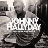 J'en parlerai au diable - Johnny Hallyday
