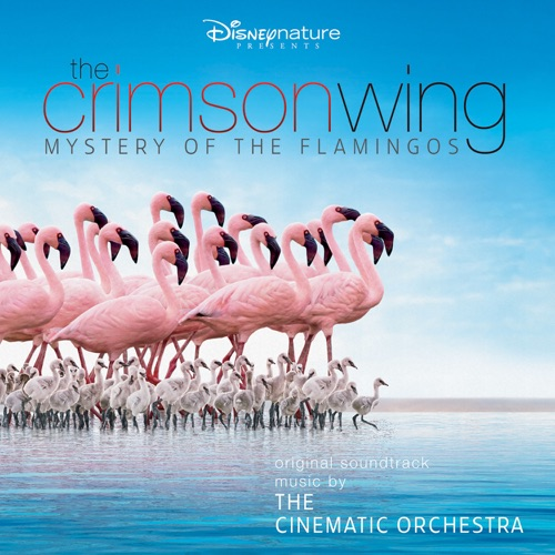 The Cinematic Orchestra & London Metropolitan Orchestra - The Crimson Wing: Mystery of the Flamingos (Original Soundtrack)