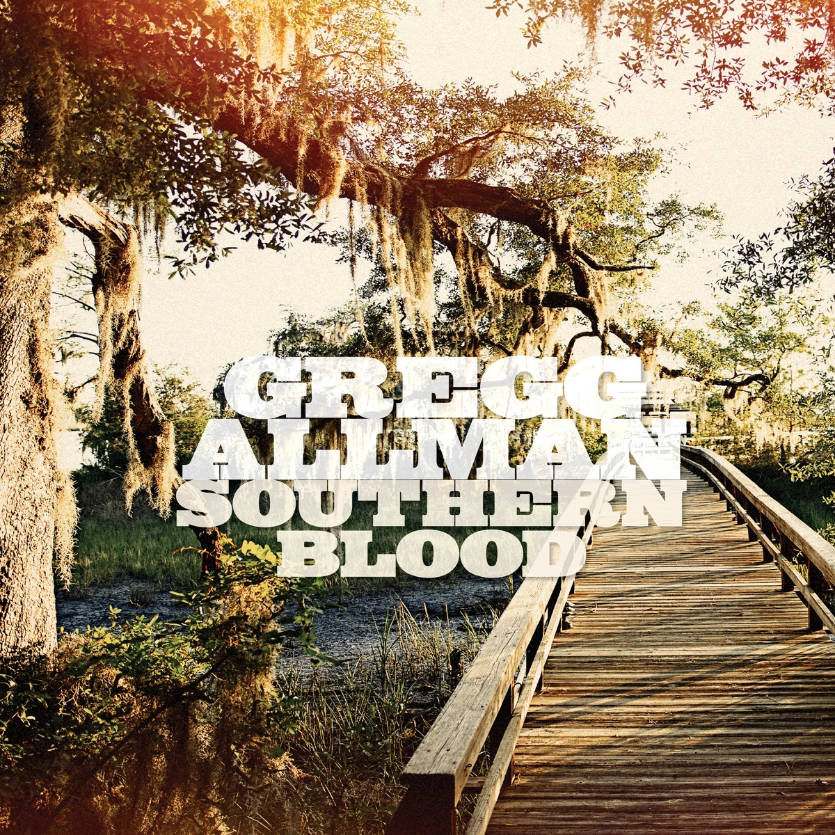 Southern Blood Deluxe Edition Gregg Allman CD cover