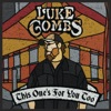 Luke Combs - Beautiful Crazy Song Lyrics