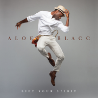 Aloe Blacc - Can You Do This artwork