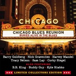 Chicago Blues Reunion - Walk Away (feat. Tracy Nelson) [Live]