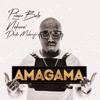 Prince Bulo - Amagama (feat. Nokwazi Dlamini & Dladla Mshunqisi) [Club Mix] artwork