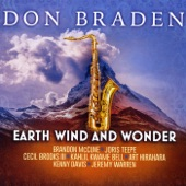 Don Braden - The Wonder of You