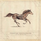 Turnpike Troubadours - The Hard Way