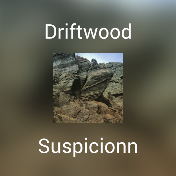 meet driftwood singles Single day backstage meet & greet + vip lounge with early entry ticket: $249 per day - includes 1 vip admission ticket to driftwood - backstage meet and greet with select driftwood artist at a.