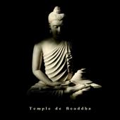 Temple de Bouddha: Sons de nature relaxants et musique de thérapie de guérison, Sommeil profond, Bien-être, Spa & massage, Écoute facile