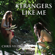 Strangers Like Me (feat. Traci Hines) - Chris Villain