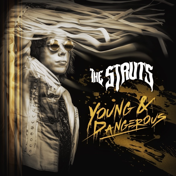 YOUNG & DANGEROUS album image