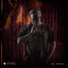 Dr. Fresch - Fire artwork