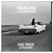 Fake Magic (LO'99 Remix) - Single