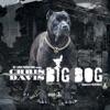 Big Dog - Single