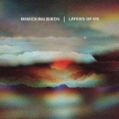 Mimicking Birds - Another Time