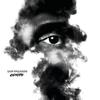 Sam Paganini - Gravity artwork