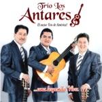 Trío Los Antares - Quien Tiene Tu Amor