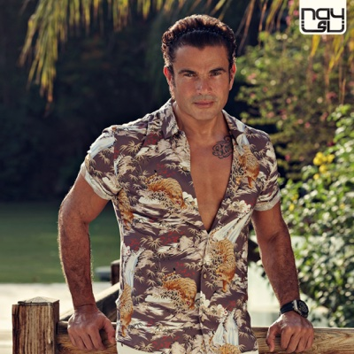 Meaddy El Nas - Amr Diab album