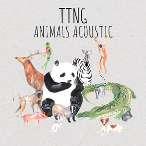 TTNG - Animals Acoustic