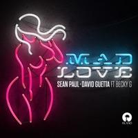 Mad Love (Ice rmx) - SEAN PAUL / BECKY G