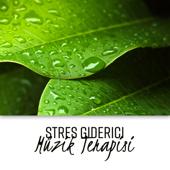 Stres Giderici: Müzik Terapisi - Derin Gevşeme, Yağmur Sesi, Spa ve Masaj, Plaj Gevşeme, Şifalı Sesler Okyanus