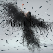 Black Bird  Tiny Dancers  Omoideha Kireide  EP-Aimer