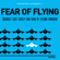 Lisa Jennings - The Pretty Damn Concise Guide to...Fear of Flying: Quickly and Easily End Fear of Flying Forever! (Unabridged)