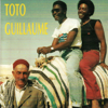 Colden collection, Vol. 1 - Toto Guillaume