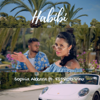 Sophia Akkara - Habibi (feat. FSPROD Vinu) artwork