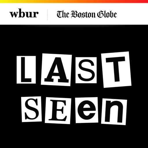 Cover image of Last Seen