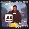 Marshmello & Roddy Ricch - Project Dreams  artwork