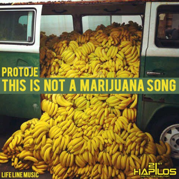 This Is Not a Marijuna Song - Single