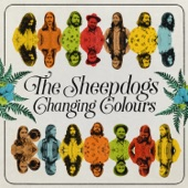 The Sheepdogs - Let It Roll