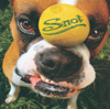 Snot - Stoopid grafismos