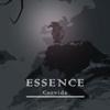 Essence of Misery (Music) - Corvida